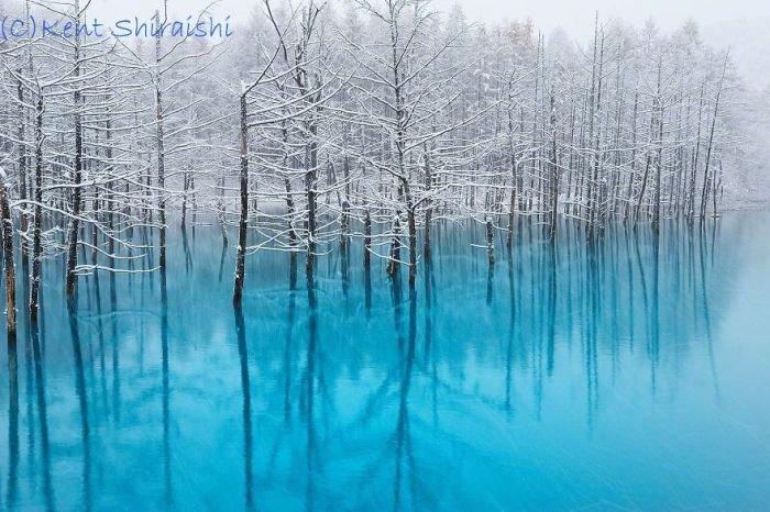 Голубой пруд в Японии (14 фото)