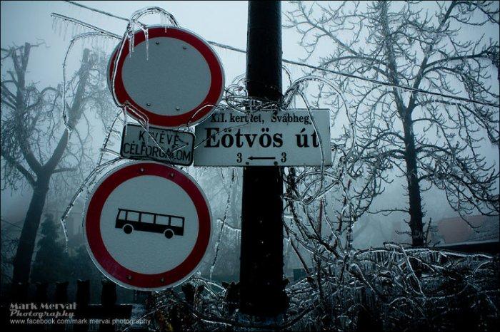 Ледяной туман в Будапеште (18 фото)