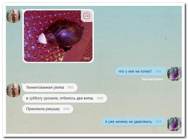Скриншоты из социальных сетей. Часть 209 (30 фото)