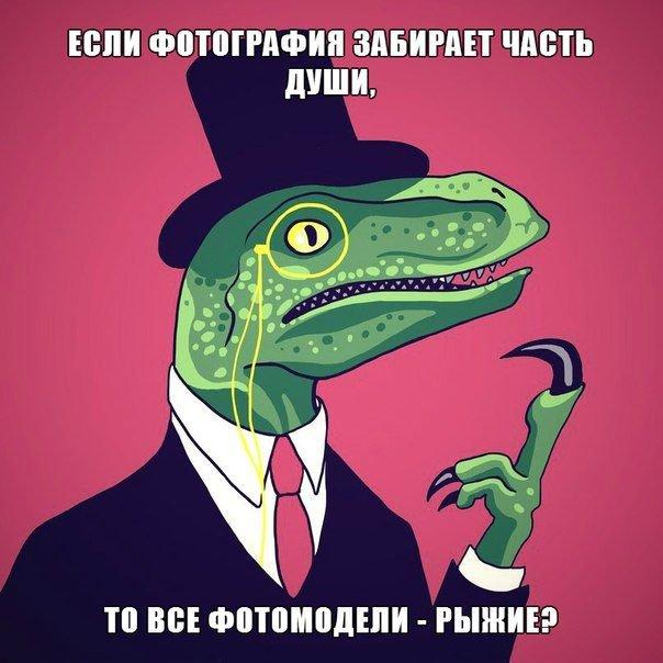 Размышления динозавра-философа (30 фото)