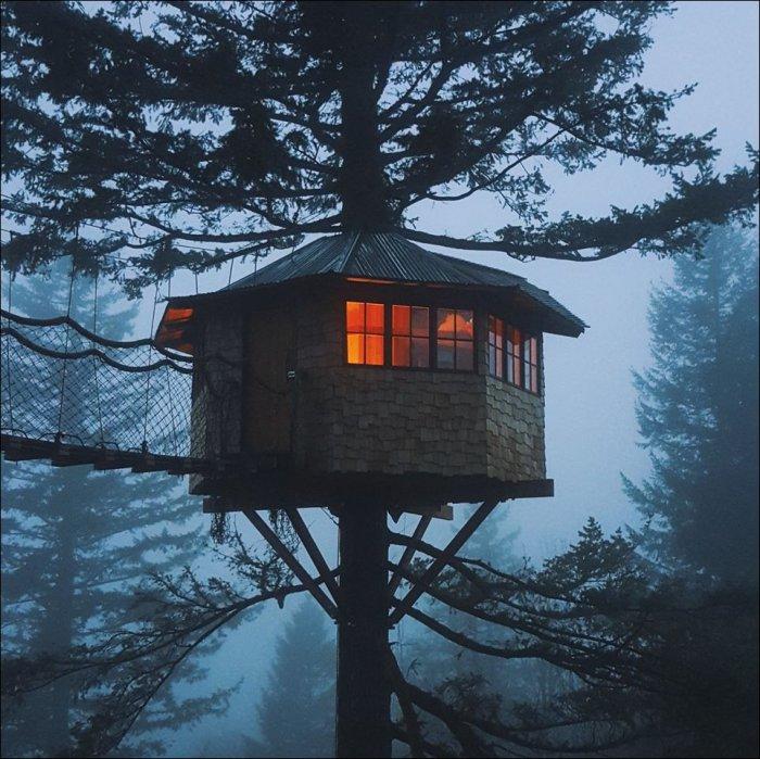 Домик на дереве (12 фото)