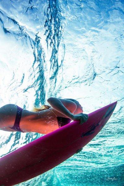 Серфингистки (39 фото)