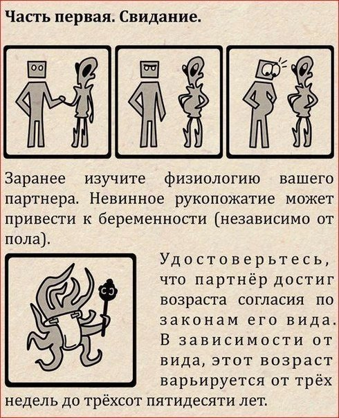 Про межвидовые отношения (9 фото)