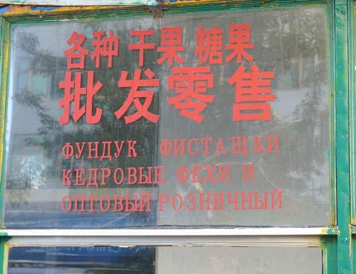 Трудности перевода (41 фото)