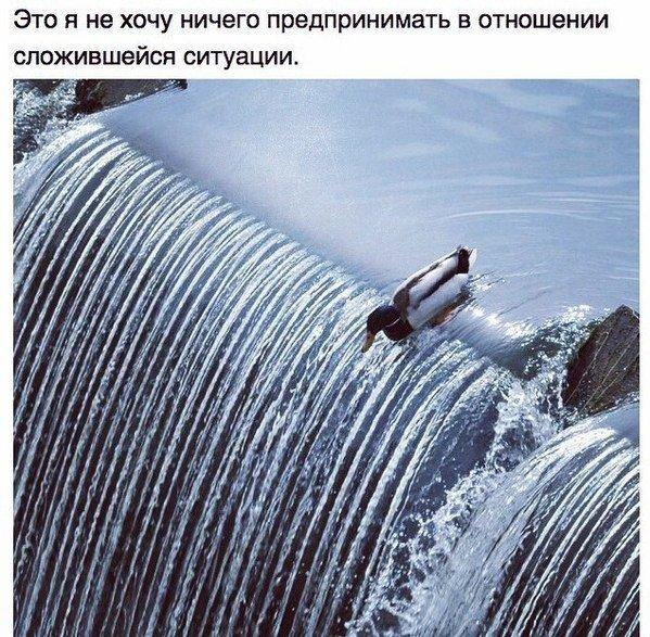 Фотоподборка среды (92 фото)