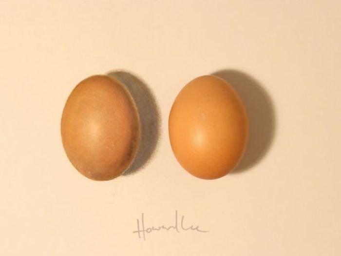 Потрясающие рисунки от Ховарда Ли (20 фото)