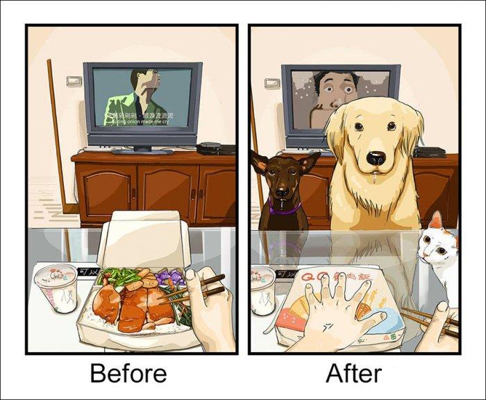 До и после того, как ты завел собаку (8 фото)
