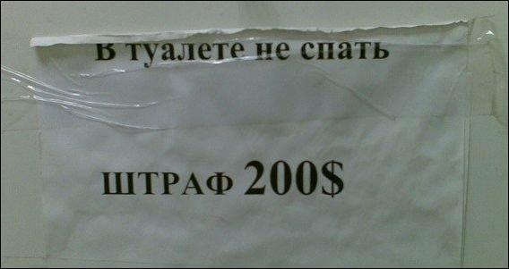 Загонные объявления и надписи (22 фото)