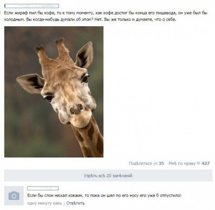 Скриншоты из социальных сетей. Часть 357 (40 фото)