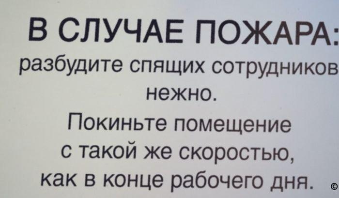 Надписи в офисе прикольные картинки