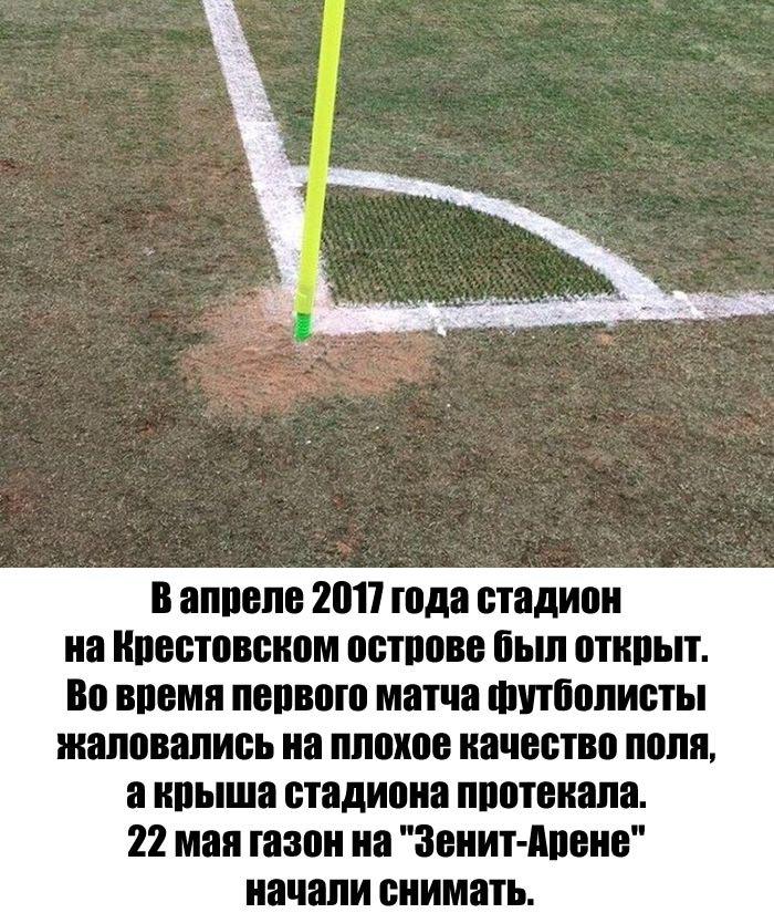 стадион зенит картинка прикол часть