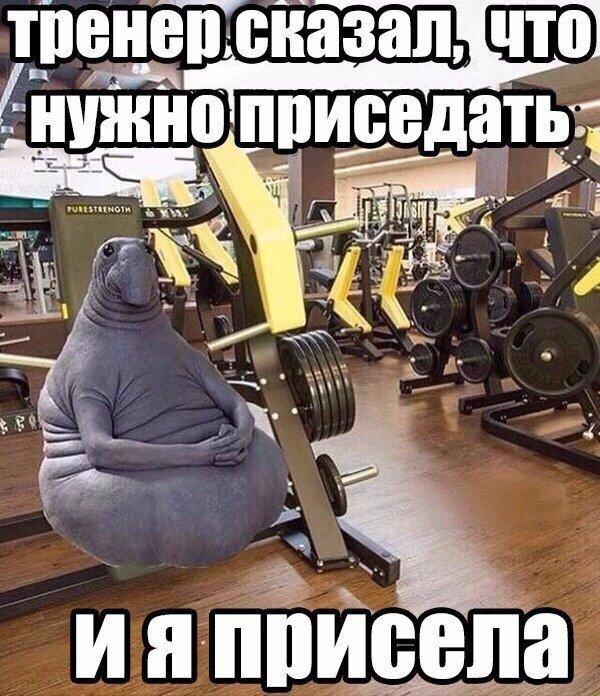 Картинка про фитнес смешная, день россии