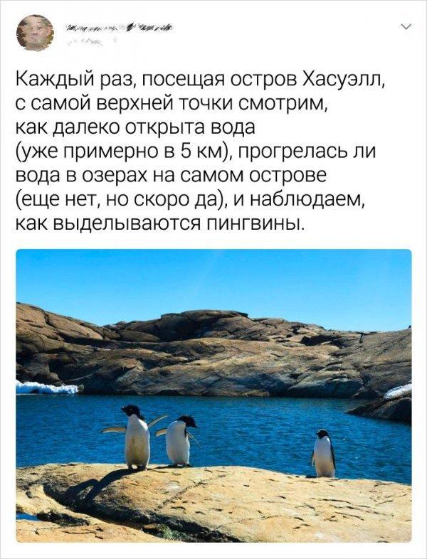 Полярник о своих впечатлениях об Антарктиде. Часть 2