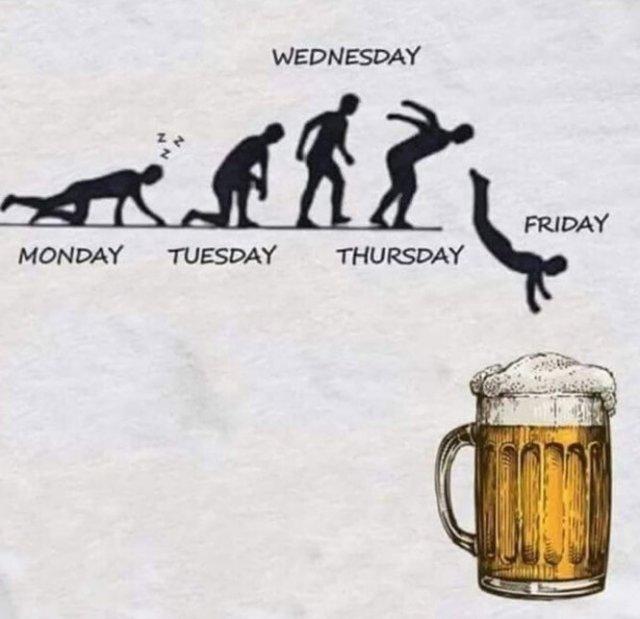 Юмор про алкоголь и вечеринки