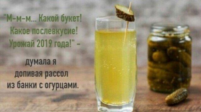 Юмор про алкоголь