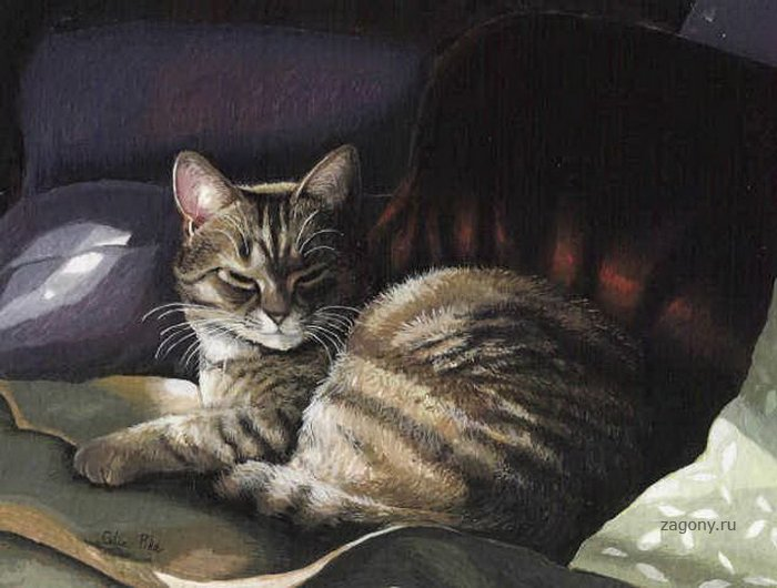 Рисованные коты (20 фото)