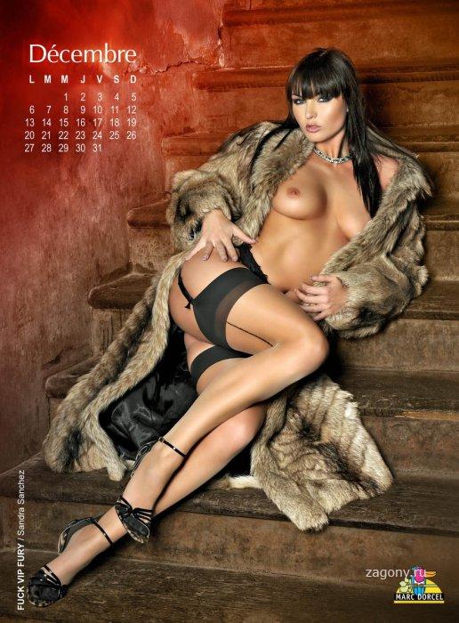 Marc Dorcel Calendar (5 фото)