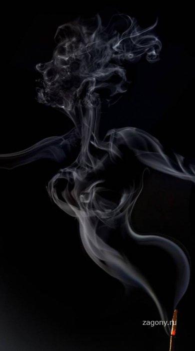 Дымовые завесы (14 фото)