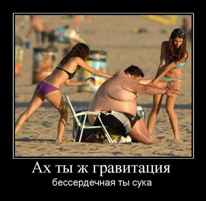 толстые мужики демотиваторы все