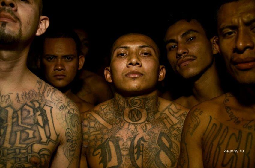 есть америка банды картинки остальные кроме современных