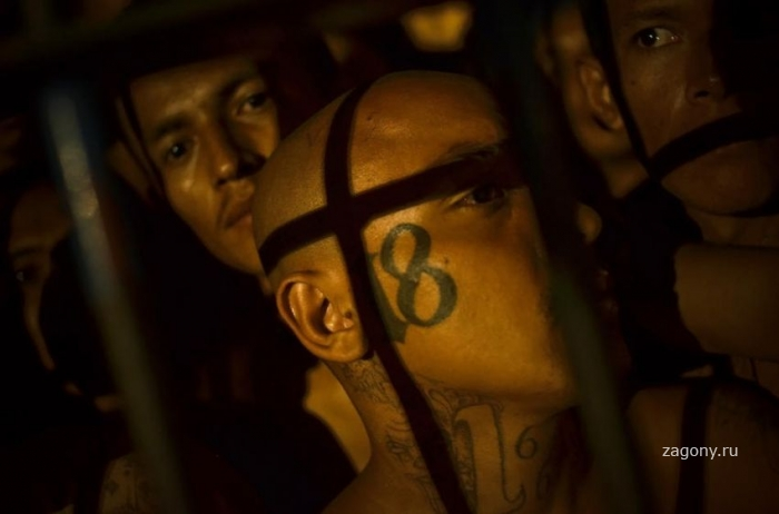 Тюрьмы Латинской Америки (15 фото)