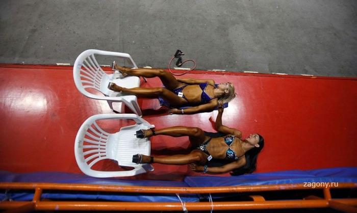 Загребский чемпионат Европы по бодибилдингу (13 фото)