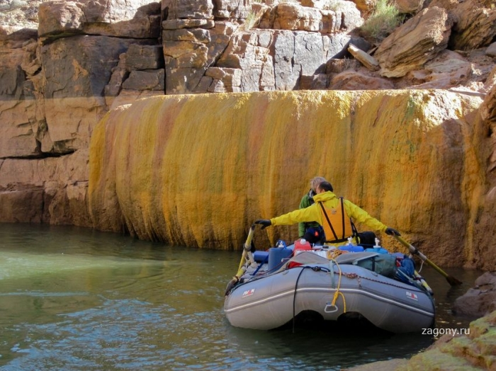 Ядовитый бассейн в Гранд Каньоне (9 фото)