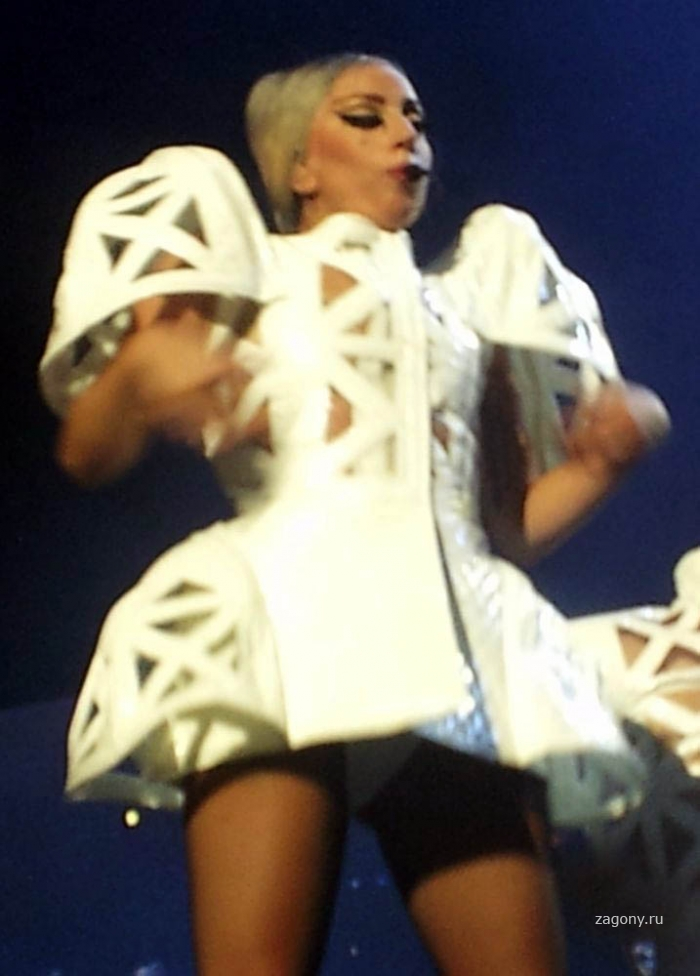 Леди Гага (15 фото)
