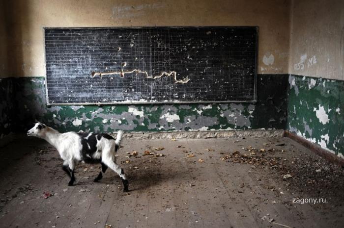 Жизнь в Болгарии (38 фото)
