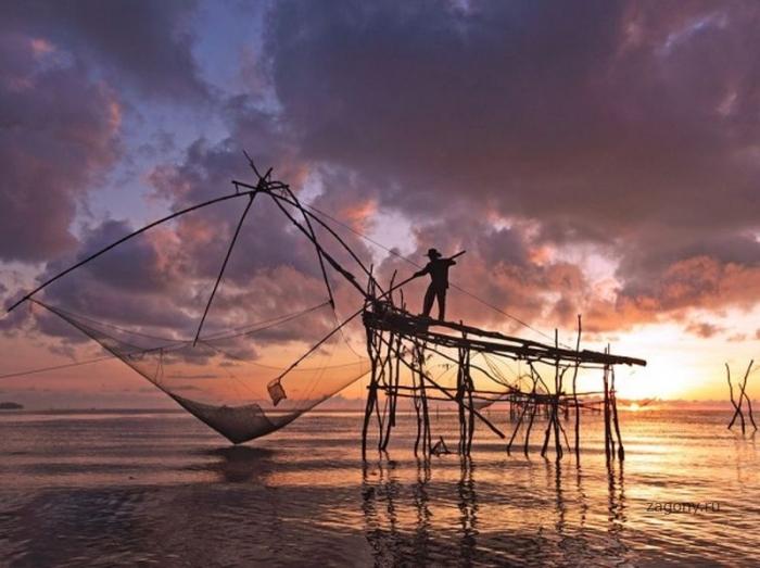 Лучшие фотографии National Geographic за полгода (53 фото)