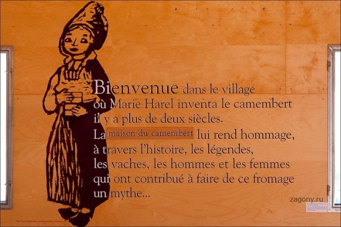 Камамбер. Франция (25 фото)