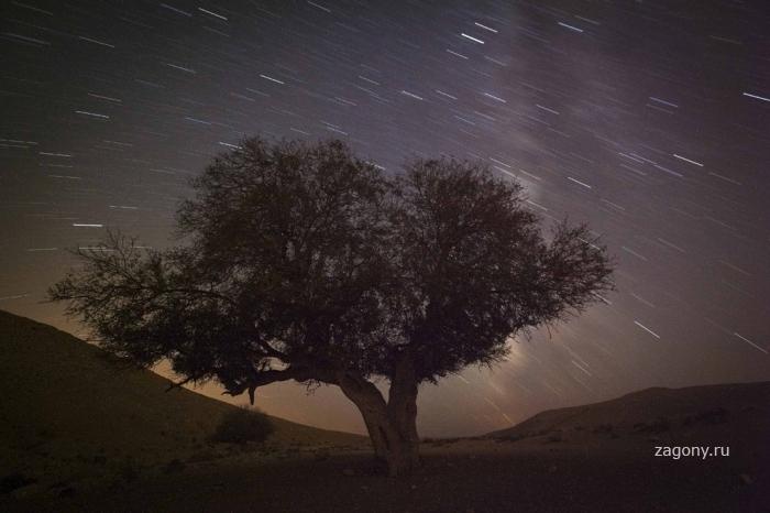 На Землю пролились Персеиды (18 фото)