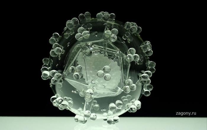 Убийственная красота вируса из стекла (18 фото)