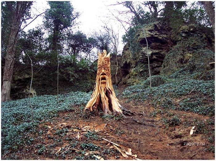 Скульптуры из срубленных деревьев (13 фото)