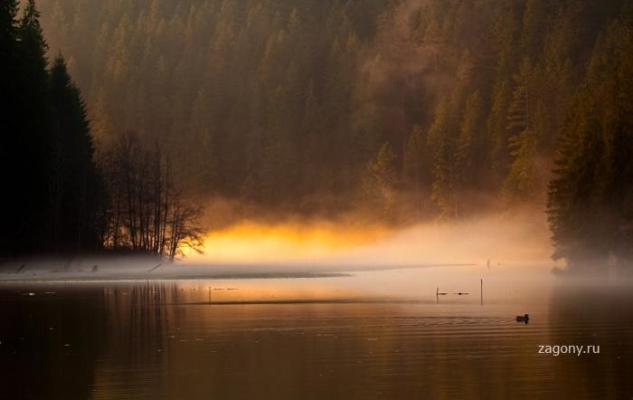 Пейзажи фотографа Elena Simona Craciun (37 фото)