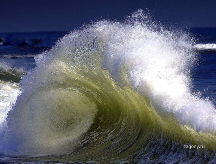 С волны на волну (15 фото)