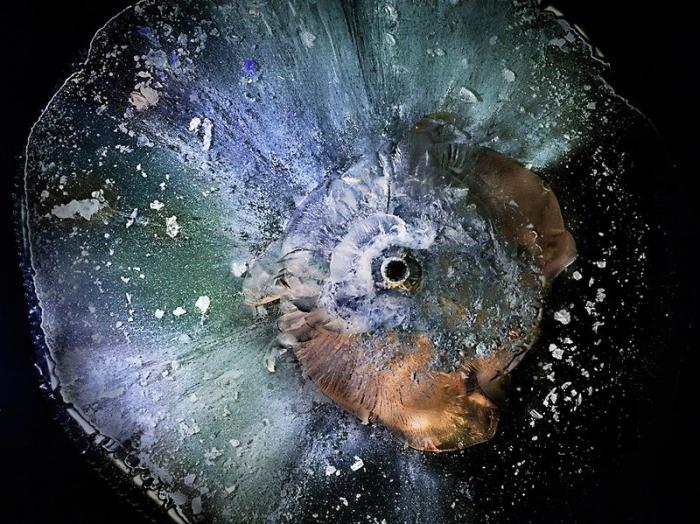 Как пуля разбивает органическое стекло (11 фото)