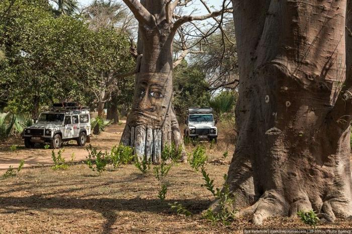 Стены Гамбии (27 фото)