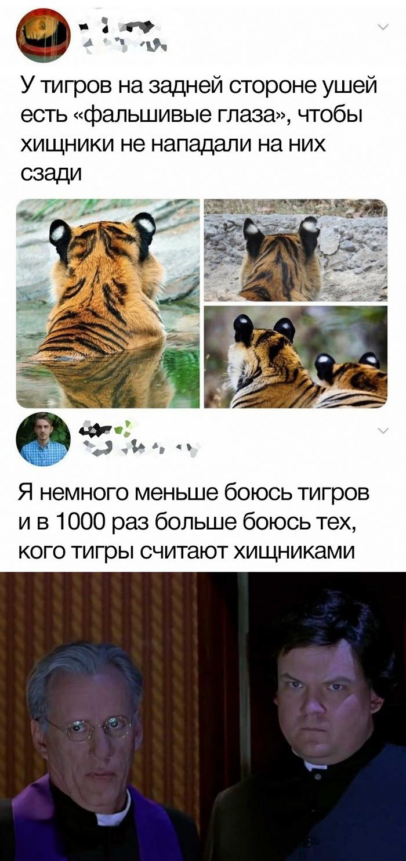 Скриншоты из социальных сетей. Часть 886 (30 фото)