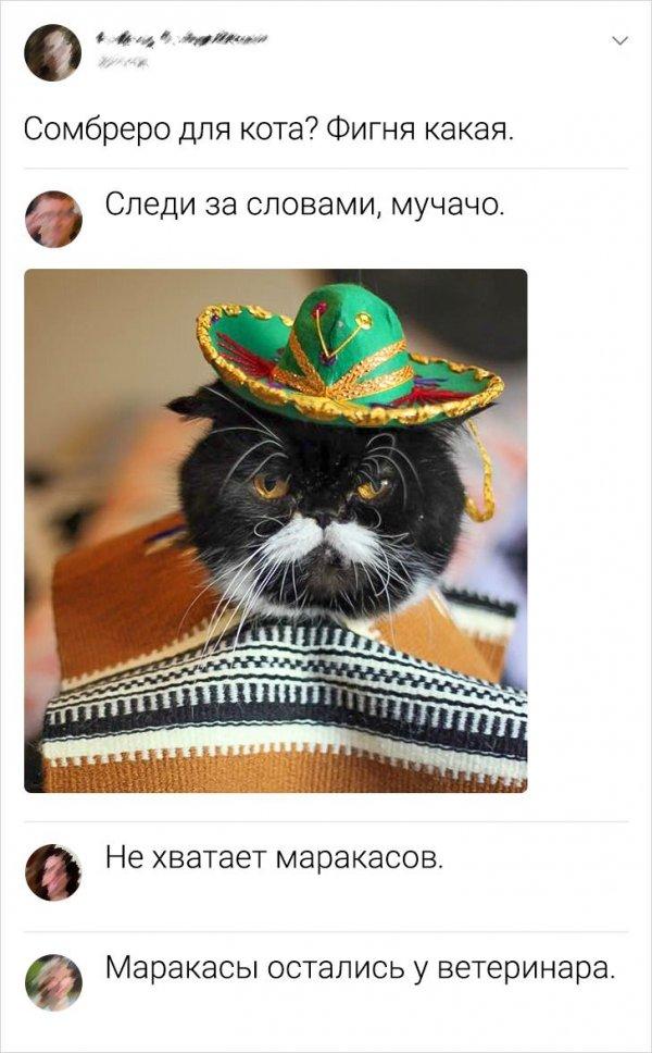 Скриншоты из социальных сетей. Часть 1112