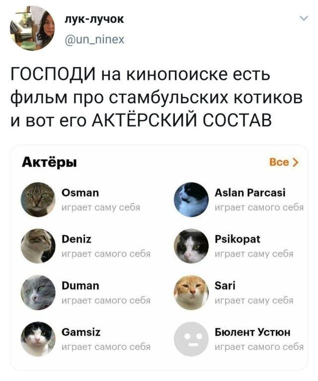 Скриншоты из социальных сетей. Часть 1223
